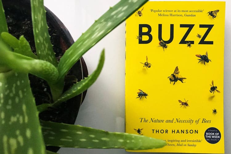 buzz endangered bees