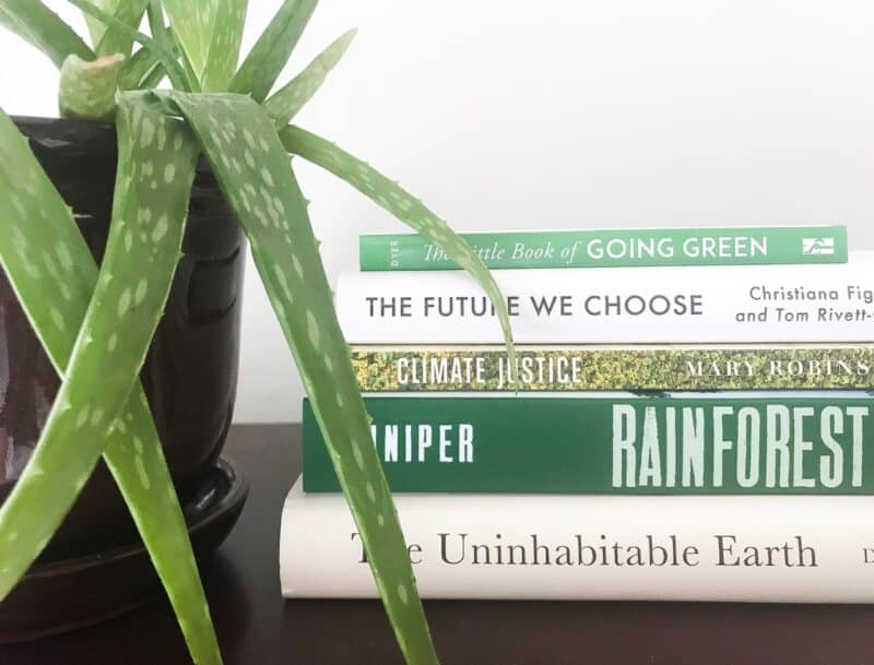 summer reading_books on climate change